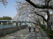 kiso river